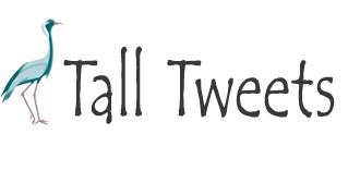 Un tweet de plus de 140 caractères avec Tall Tweets